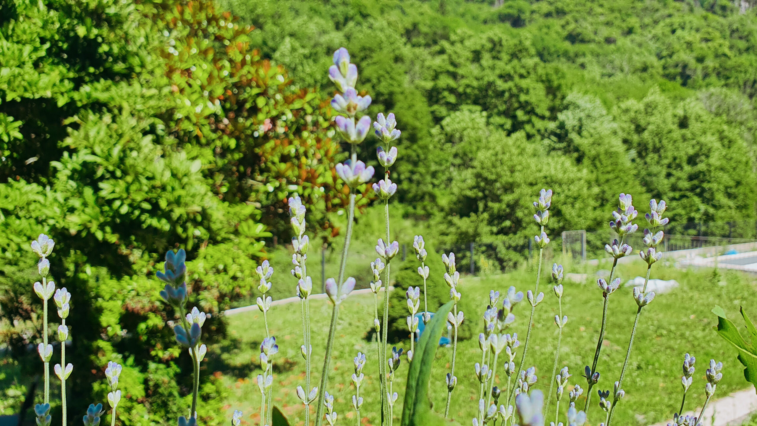 Chambre gîte le coulassou en Ardèche